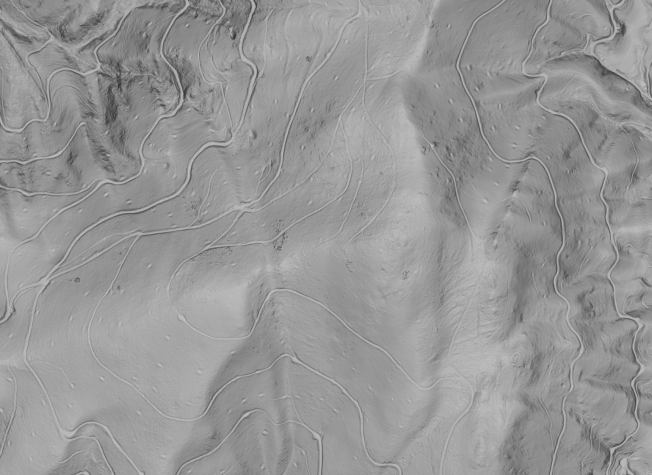 Zoomed-in shaded relief image with simulated vertical illumination (elevation 90°).